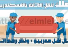 شركات نقل اثاث بالاسكندرية
