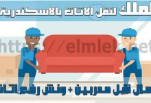 صورة شركة تركيب نقل أثاث الاسكندرية