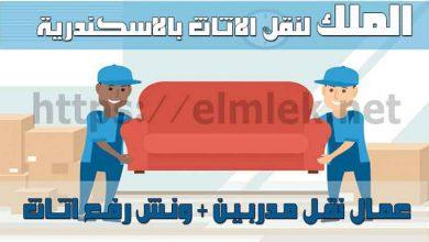 صورة شركة نقل أثاث الاسكندرية